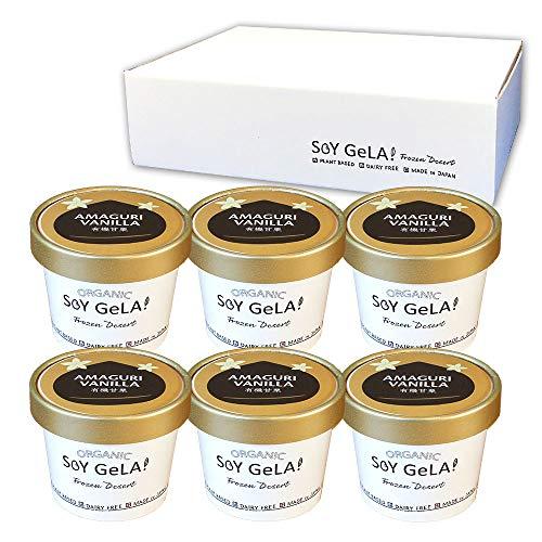 オーガニック 豆乳 ジェラート 有機 甘栗 100ml 6個セット 無添加 国産 低カロリー バニラ 栗