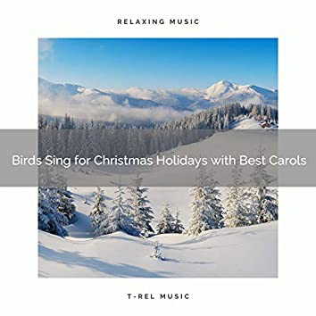 Birds Sing for Christmas Holidays with Best Carols