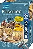 Kosmos 657918 Fossilien Ausgrabungs-Set, Grabe echte Versteinerungen und Bernstein selbst aus, mit Hammer und Meißel, Experimentierset für Kinder ab 7 Jahre, Edition 2020