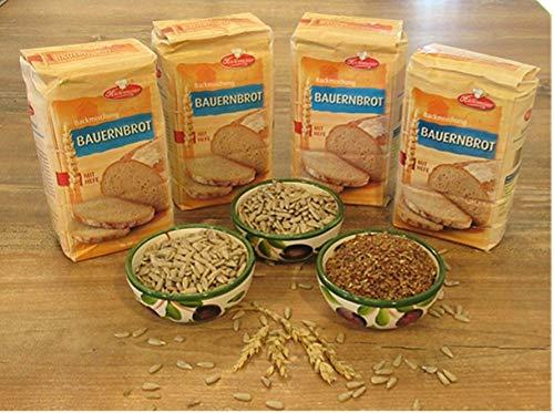 Leguana Handels GmbH 4-er Set Brotbackmischungen Bauernbrot- insgesamt 4X 750g Brot, incl. Bio-Sonnenblumenkörner, Leinsamen, Kürbiskerne & Quinoa