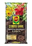 Compo Sana Universal LT. 50sustrato de jardín, Multicolor, única