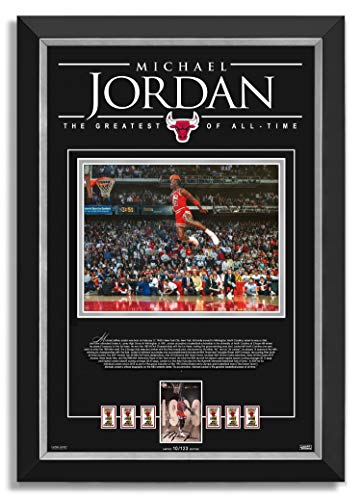 Daniel Parry International Inc. Michael Jordan Facsimile Signed/Autographed All-Star Slam Dunk Chicago Bulls - Archival Etched Glass Museum Frame image