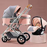 TXTC 3 in 1 Baby Stroller Carriage Foldable Luxury Pushchair Stroller Shock Absorption Springs Pram High View Baby Stroller with Bottle Rack,for Infant and Toddler (Color : Pink)