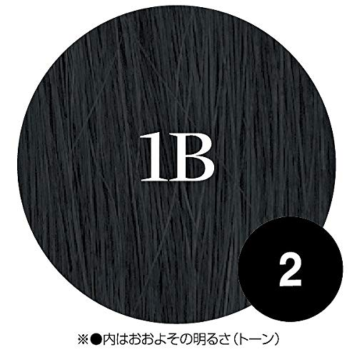 【ジェニュイン】N.B.A.A. ヒューマンヘアー ストレート 1B NB-E249 70cm(47g+α)