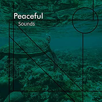 Peaceful Sounds, Vol. 23