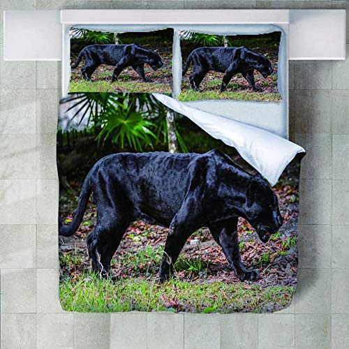 JNBGYAPS 3D Effect Printed duvet cover Panther Bedding set with Pillocases (with Zipper Closure) Soft Microfiber Quilt Cover Single200X200cm