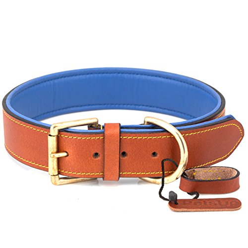 PetsUp Leather Dog Collar Neck Belt for Small Medium Large Dogs (Tan and Blue)
