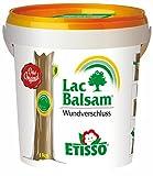 Etisso LacBalsam® Wundverschluss - 1kg mit Streichspachtel