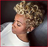 Naseily Short Blonde Afro Curly Wigs for Black Women Natural Synthetic Wigs for Women Short Blonde Hairstyles for African American Women