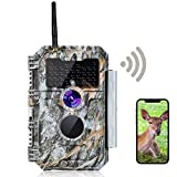 Best Trail Camera Pictures - BlazeVideo Game Trail Deer Camera with Bluetooth Wireless Review