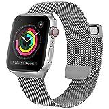 Oumida Cinturino Comapatibile per Apple Watch Cinturino 44mm 42mm 40mm 38mm, Morbido Metallo Cinturini per Apple Watch Iwatch Serie 6 5 4 3 2 1 SE, 2 Calamita Super (42/44mm Grigio)
