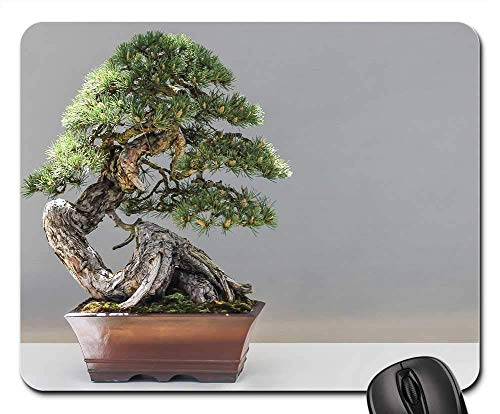 Mouse Pad Bonsai Pine Plant Culture Künstlerisches Spiel Student Computer Rubber Durable Desktops Bürogeschenk Mauspad 25X30Cm Weihnachten Mausmatte Schlafsaal Tastatur