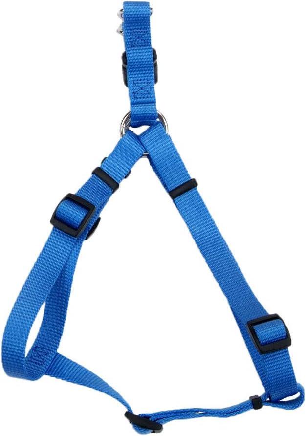 Coastal - Comfort Max 47% OFF Wrap Adjustable Lagoon Blue Dog 1