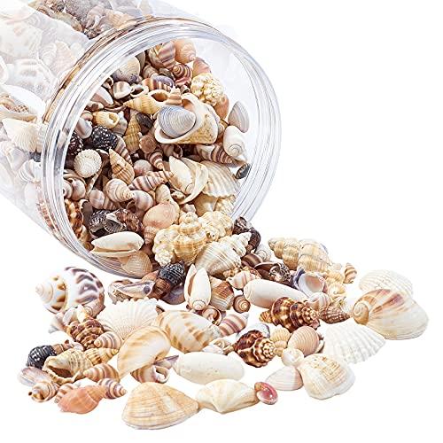AHANDMAKER Conchas de Playa Mixtas de 400 gramo de Vida Marina Natural, Concha En Espiral de Playa, Artesanía para Decoración de Fiestas Temáticas, Fabricación de Velas, Llenado de Peceras