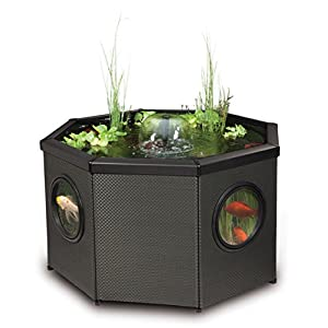 Blagdon Affinity Octagon Mocha Weave Pool, Comes with Inpond 5-in-1 3000 Filter Pump with UV Clarifier, LED ...