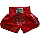 FLUORY Muay Thai Fight Shorts, MMA Shorts Kleidung Training Käfig Fighting Grappling Martial Arts Kickboxen Shorts Kleidung, MTSF01HONG, Small
