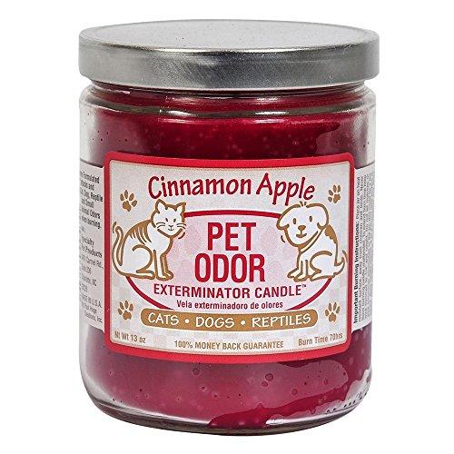 Pet Odor Exterminator Candle, Cinnamon Apple, 13 oz