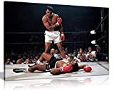 Panther Print, Large Canvas Wall Art, Beautiful Living Room Framed Art, Quality Picture Prints for Walls, Iconic Design Muhammad Ali Boxing Sonny Liston, Print for Special Occasions (91x61cm)