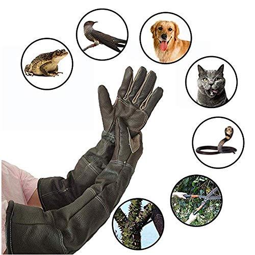 HGFLYF Anti-Biss Tierhandhabungshandschuhe, Rindsleder Langlebige Ärmel Anti-Kratz Verdickung Leder Ultra Langer Handschuh Handschutz Für...