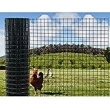 Malla De Alambre Verde Cercado De Jardín Rollo, 3cm Cuadrado Agujero De Malla 1,6mm Acero Galvanizado Cable Recubierto De PVC para Decorar Vallas, Jaula para Mascotas (Color : 1.6mm, Size : 1x6m)