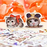 BLOUR 30 Stück Kawaii Aquarell Stil Kreative Nette Katze Aufkleber Selbst gemachtes Tierpapier...