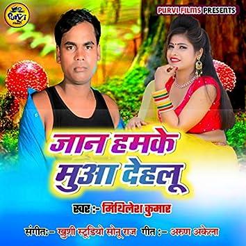 Jaan Hamke Mua Dehalu