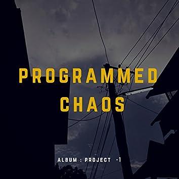 Programmed Chaos