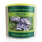 Keimsamen Phacelia 150g I Samen zur Bodenverbesserung und Unkrautvermeidung I Ideal als Bienenweide I Zertifiziertes Saatgut für 100 m²