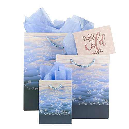 3 Pack Assorted Size Gift Bags with Tissue Paper (Winter Sunrise)