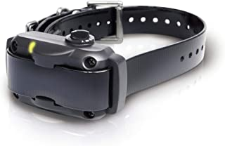 Dogtra YS600 Rapid Charging No Bark Collar - 10 Level Stimulations, Medium to Large