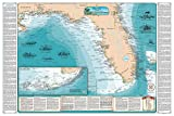 Sealake Products Beautiful Shipwreck Map of Florida and The Eastern Gulf of Mexico (Laminated)