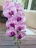 NO BRAND Llzpl 1 Pieza 90 cm orquídea Real Flor Artificial Flor Falsa Planta Artificial decoración de la Boda Beige