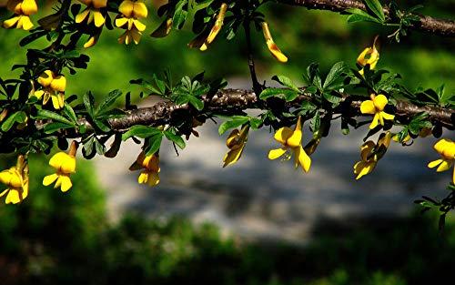Adultos Puzzle 1000 Piezas De Madera Niño Rompecabezas Flores Amarillas Juego Casual De Arte Diy Juguetes Regalo Interesantes Amigo Familiar Adecuado