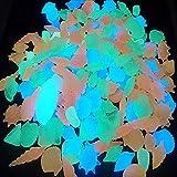 Piedras Acuario Decoracion de Acuarios Piedras para peceras Acuario de sustrato de Grava Pecera Grava Natural Pecera Piedras bajo Precio