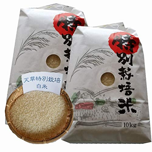 令和2年 熊本県 天草地方産 こしひかり 特別栽培米 白米 10kg×2袋(20kg 業務用)