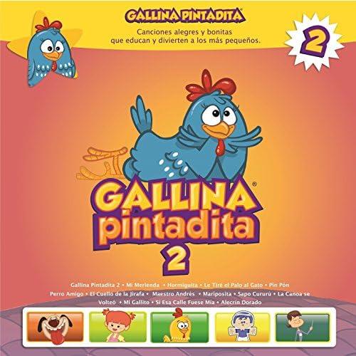 Gallina Pintadita