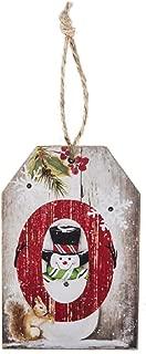 Ganz Light Up O Decorative Hanging Ornament,Multicolored