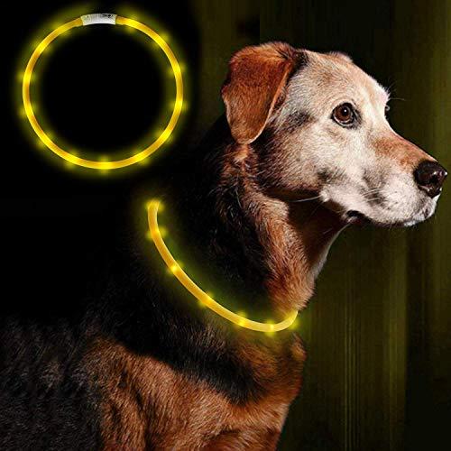 Anicoll LED Leuchthalsband Hunde Halsband Gelb USB wiederaufladbar - Längenverstellbarer Haustier Sicherheit Kragen für Hunde und Katzen- 3 Modus 12 Lichte(Gelb)