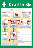 Plakat/Aushang' Erste Hilfe' BGI/GUV neue Fassung in 2 Größen (DIN A3 (297 x 420 mm))