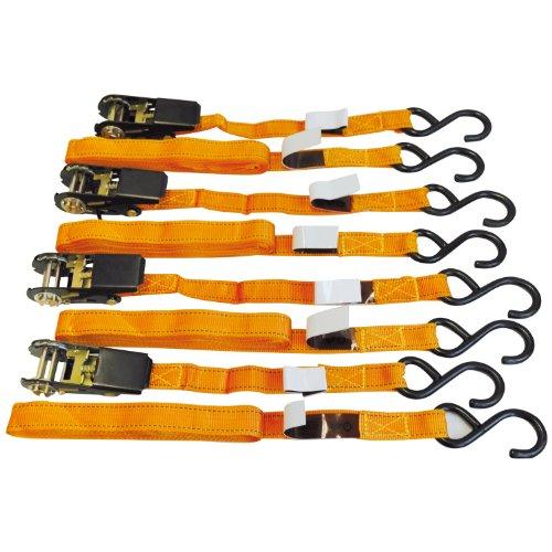 Cartrend 70166 Set de arnéses de seguridad con ganchos y tensores 25 mm x 4,5 m, 4 piezas