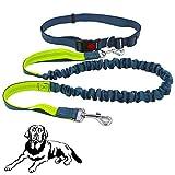 Senven® Correa para Perros Manos Libres con Costuras Reflectantes, Cinturones de Cintura Ajustables y Correas Elásticas de Doble Manija, para Correr, Caminar, Trotar (Gris Verde)