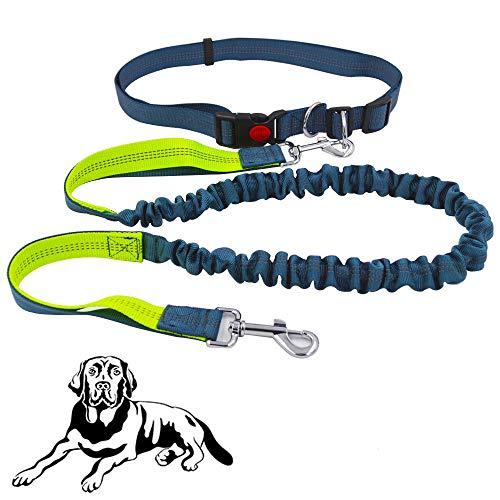senvenelec jogging hundeleine, einziehbare Hundeleine, verstellbarer Gürtel Tragegriff Laufender Bungee-Hundegurt, reflektierender Gurt, Laufen, Gehen, Wandern Hyäne (grün, grau und grau)