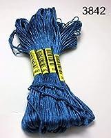 10個ステッチスレッド/ステッチ刺繍スレッド/カスタムスレッドカラー11 liaodongqinribeng (Color : 3842, Size : 6 Strands)