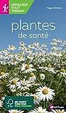 Plantes de santé - Plantes de santé - Adulte