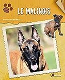 Le Malinois
