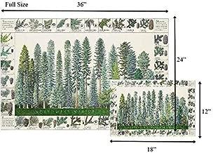 Northwest Conifers Tree Poster Identification Chart