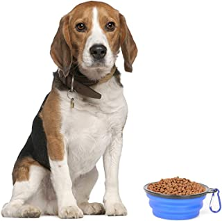 Best camping dog bowl Reviews