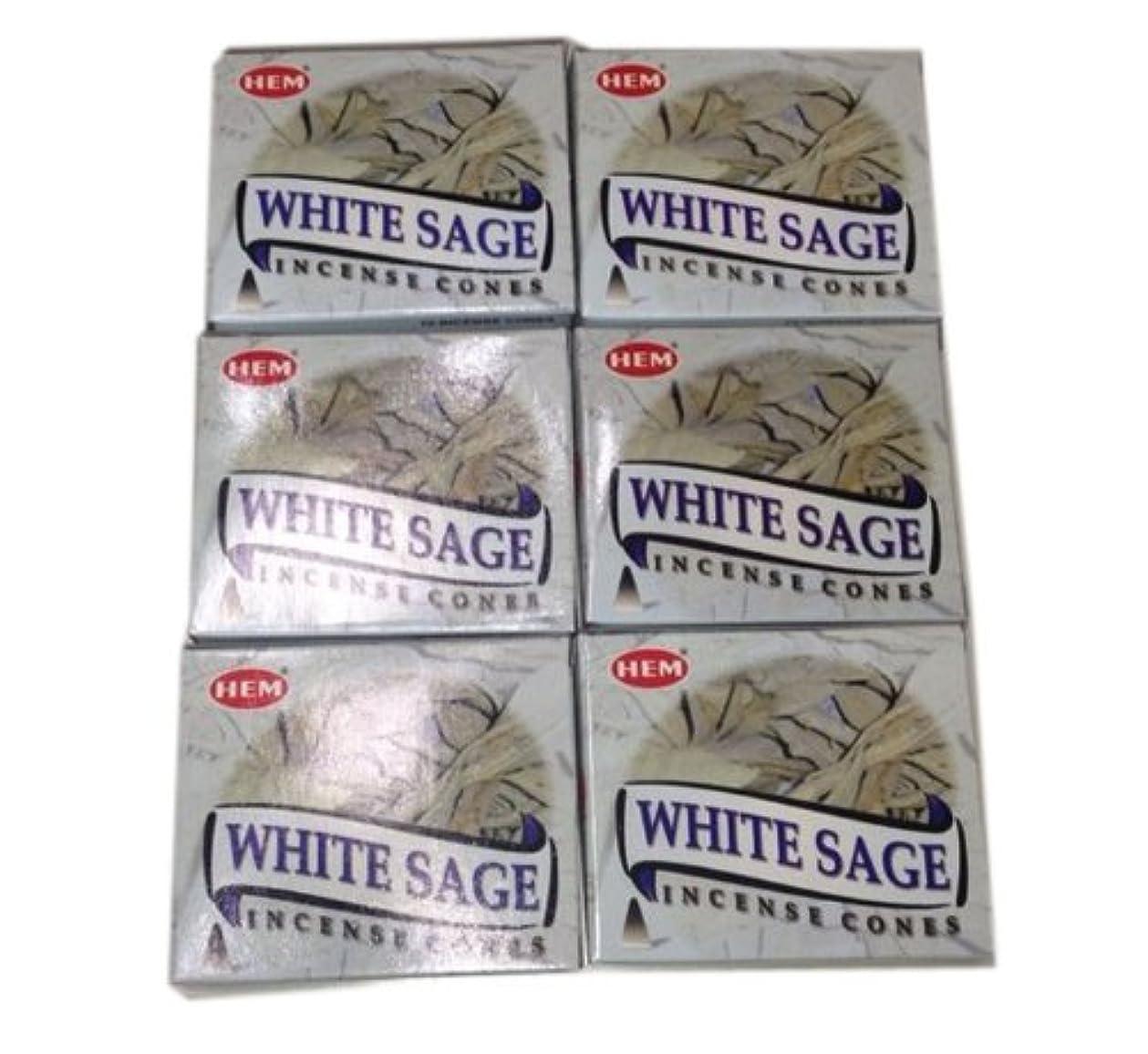 スリーブ吸収する手荷物お香コーンタイプ ホワイトセージ 60個入り