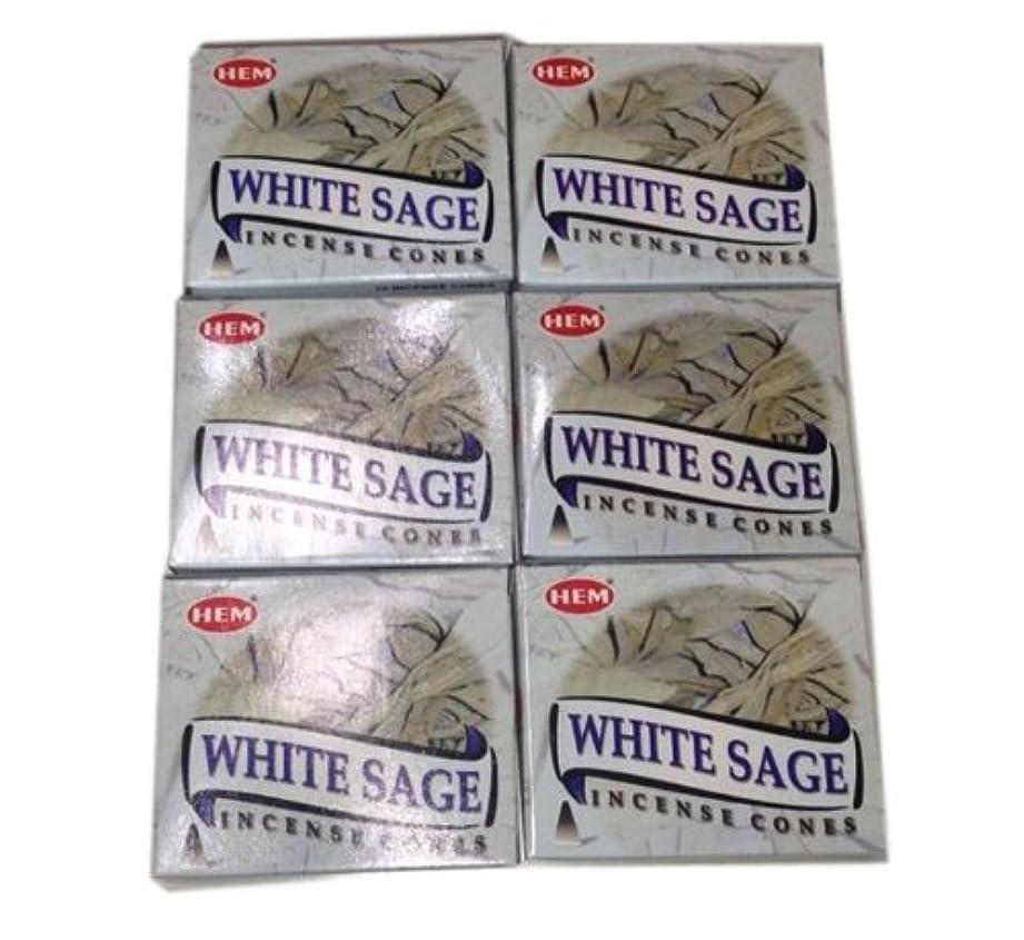 移動する毎年退化するお香コーンタイプ ホワイトセージ 60個入り