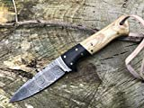 Perkin Cuchillo de Supervivencia, Caza y bushcraft Warfare Cuchillo Caza Damasco SK1200